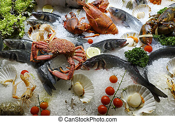 Mixed fresh raw shellfish seafood on ice for the market in close up top view format