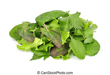 mixed fresh salad leaves