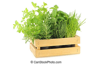 mixed herbs in a wooden crate