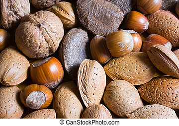 Mixed nuts in the shell selection of Brazil, almonds, walnut and hazelnuts