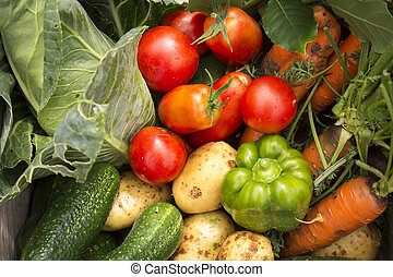 mixed organic vegetables in wooden box