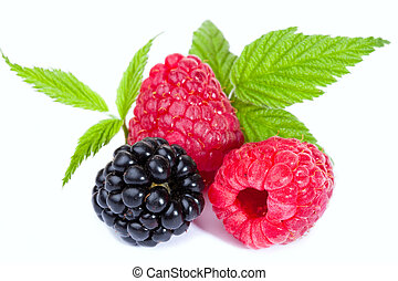 Mixed Raspberries and Blackberry with leaves - Close-up of...