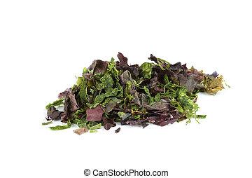 Dried mixed seaweed (Dulse, Laver, Sugar Kelp, Spirulina) isolated over white.