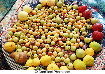 Mixed Wild Fruits, (Pear, Plum, Tangerine, Apple - Fruit, Quince)