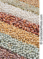 Mixture of dried lentils, peas, soybeans, beans - background...