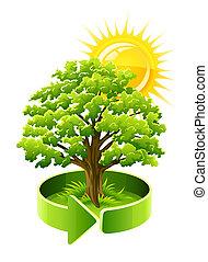 mladický kopyto, dub, což, ecology symbol