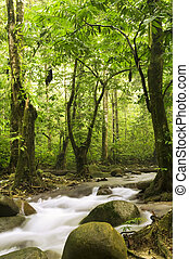 mladický les, a, řeka