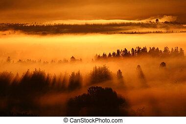 mlha, východ slunce