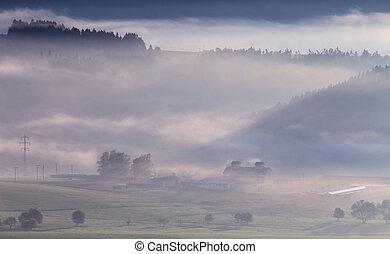 mlhavý, ráno, do, hory