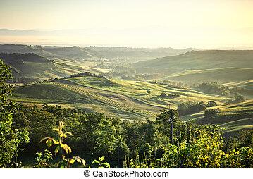mlhavý, toskánsko, krajina, východ slunce