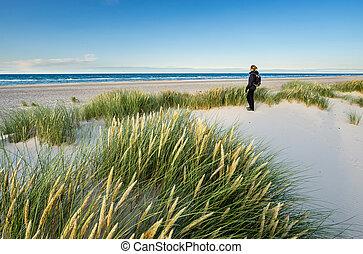 moře, písčina, denmark., turistika, skagerrak, skagen, ...