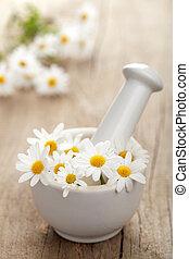 moździerz, kwiaty, camomile
