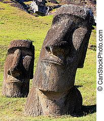 moai, à, carrière, île pâques, chil