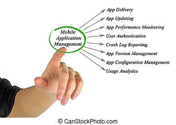 Mobile Application Management