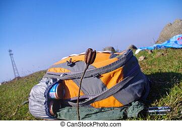 mochila, en la cima de, el, montaña