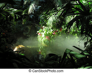 An indoor model rainforest