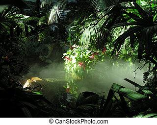 mock, rainforest