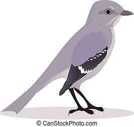 Mockingbird cartoon vector illustration