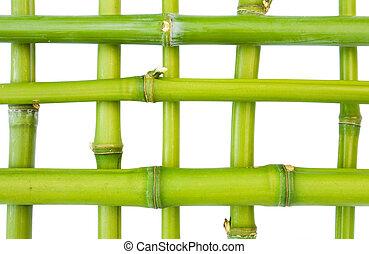 modèle, bambou
