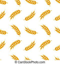 modèle, blé, oreilles