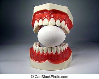 modèle, dents