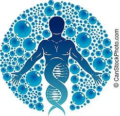 modèle, graphique, adn, scientifique, nature, eco, entouré, mâle, illustration, créé, eau, vecteur, humain, interaction., fort, technologie, amical, ball., technologie