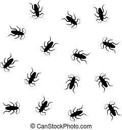modèle, insecte