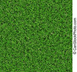 modèle, luxuriant, herbe verte, texture., papiers peints