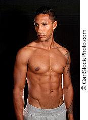 modèle, mâle, musculaire, fitness