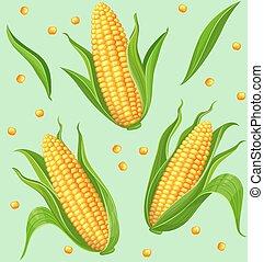 modèle, maïs, seamless, épis