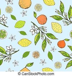 modèle, oranges, citrons, seamless, chaux