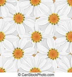 modèle, pâquerette, seamless, -, floral