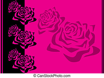 modèle, roses.