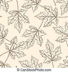 modèle, tomber, leaves., érable