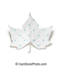moda, inverno, folha, isolado, sobre, branca, com, caminho cortante