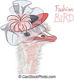 moda, pájaro, vector, avestruz, divertido