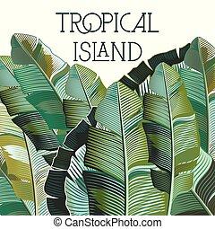 moda, tropicale, illustrazione, piante, vettore