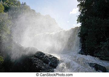 modderig, stroom, vloeiend, door, de, rivier