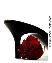 mode, chaussure noire