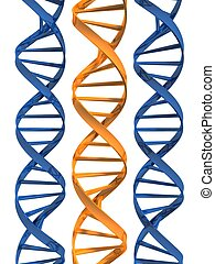 model of dna - 3d rendered illustration from parts of double...