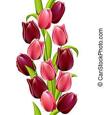 model, seamless, tulpen