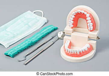 Model teeth with dental tools.