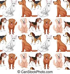 model, variëteit, seamless, dog
