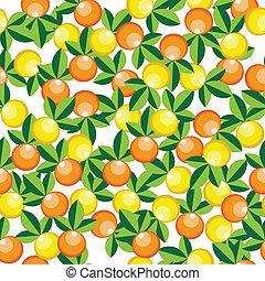 modello, arance, limoni
