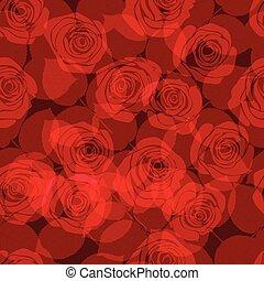 modello, con, rose