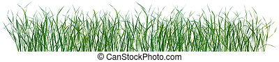 modello, erba, isolato, struttura