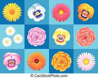 modello, fiori, fondo