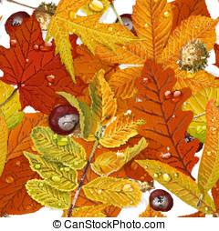 modello, foglie, seamless, autunno, fondo, bianco