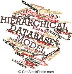 modello, gerarchico, parola, nuvola,  database