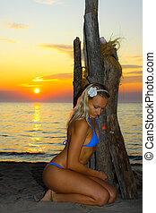 modello, tramonto, driftwood